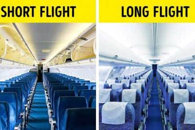 That is why airplane seats are almost always blue