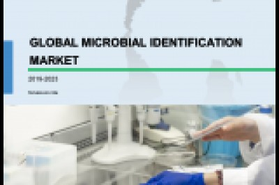 Microbial Identification Market | Industry Analysis and Emerging Trends